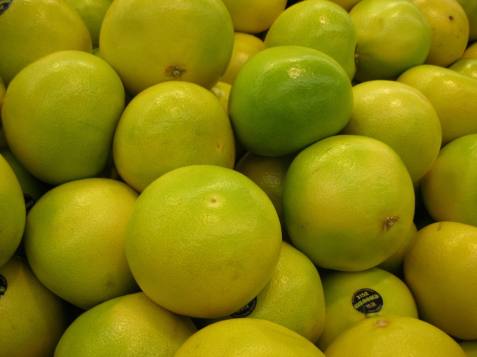Pomelo Cultivation Information Guide | Agri Farming
