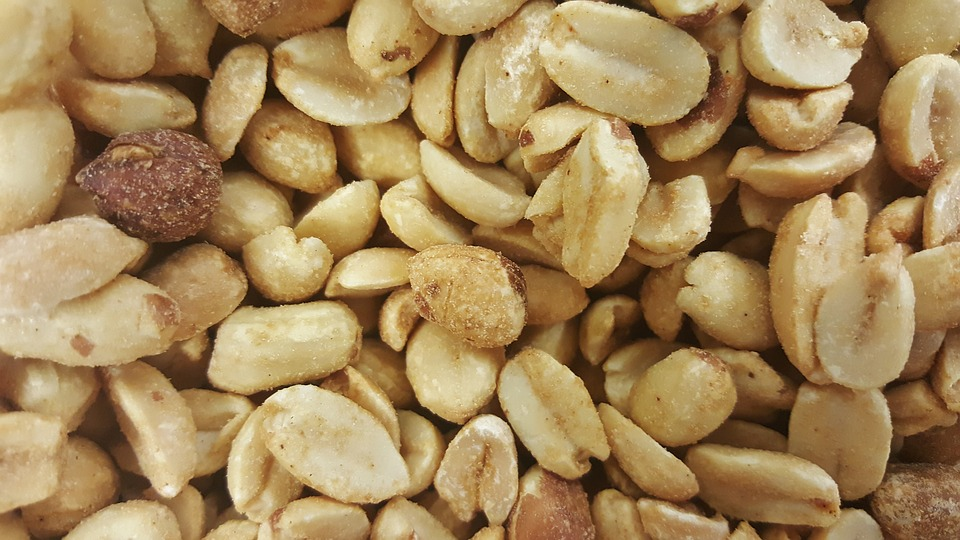 Aussie researchers may have cured childhood peanut allergy
