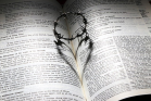 A thorny ring on the Bible